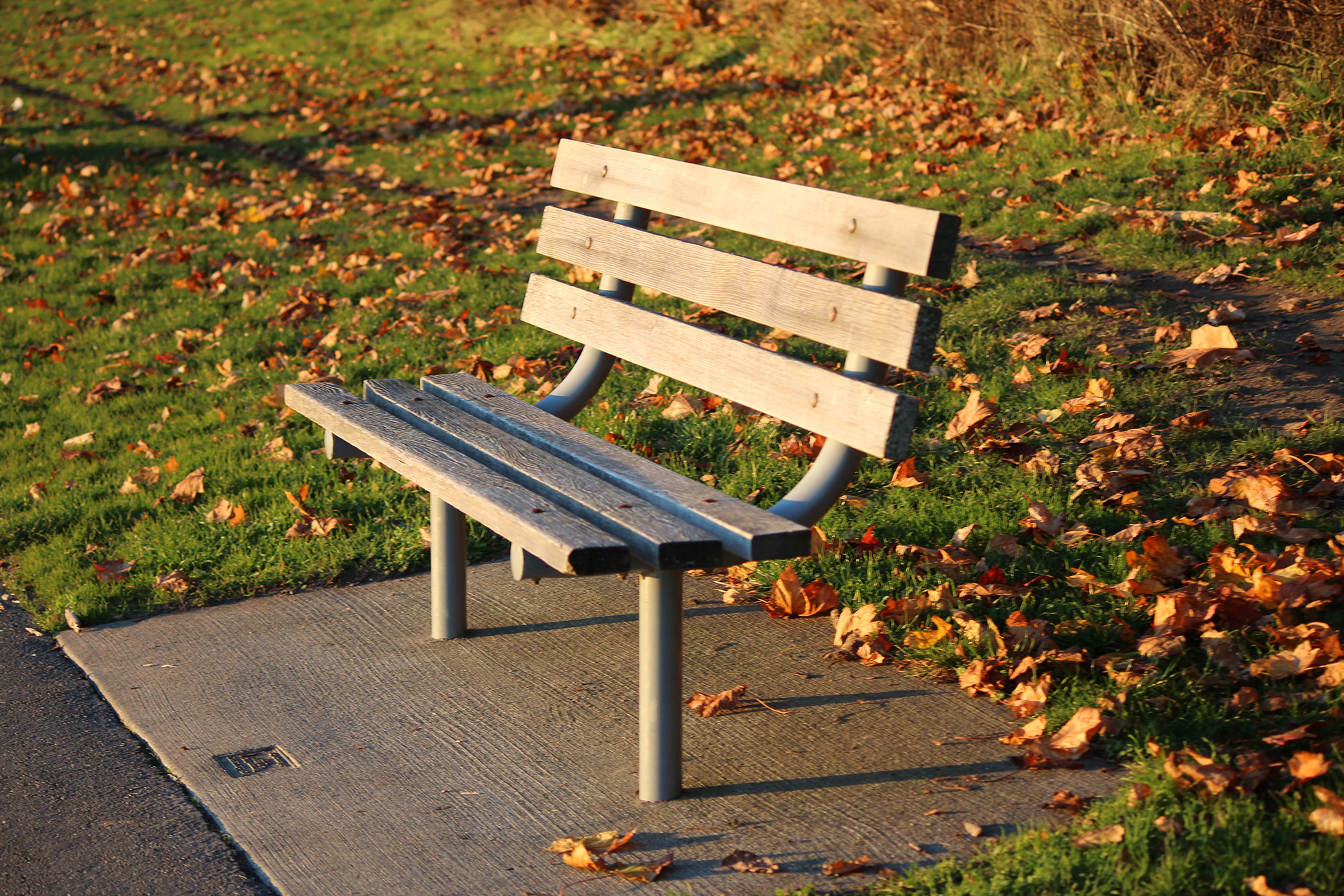 ws-lincoln-park-bench